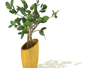 3D model Green Leafed Potted Tree