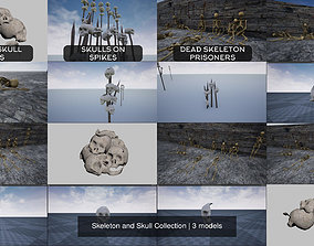 3D model Skeleton and Skull Collection