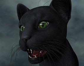 CATS-001 Rigged Cat 3D model