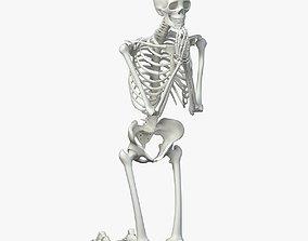 3D asset realtime Human skeleton