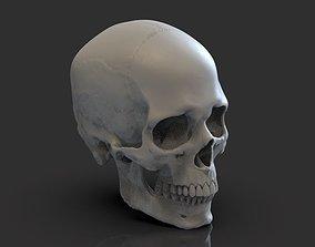 3D printable model statue Skull
