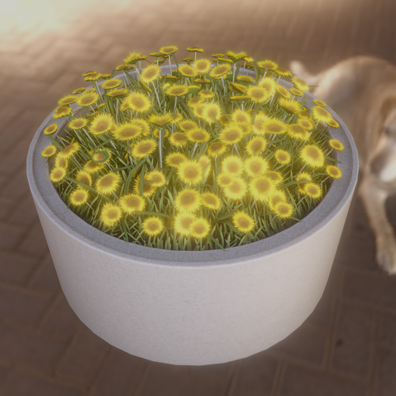Concrete Pipe Pot 1500mm with Small Sunflowers Flower Version 2 (Blender-2.91 Eevee)