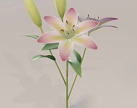 Lily 3D Model realtime