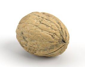 Photorealistic Walnut 3D Scan 01