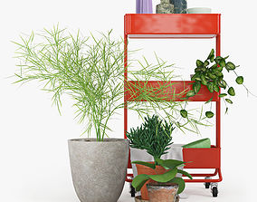 3D model IKEA RASKOG