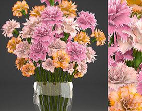 3D Bouquet of flowers Dianthus