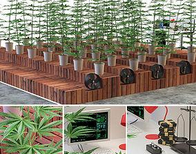 mj 3D Laboratory marijuana set