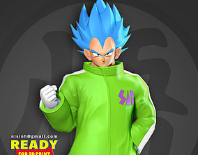 Vegeta In A Green Coat 3D printable model