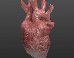 Heart Organ Realistic Game Ready 3D