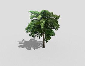 Tree island 3D asset realtime