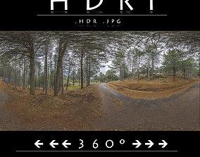 3D model HDR ROAD FOREST 2