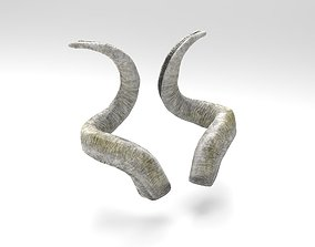 3D asset Horns of a screw-horned goat