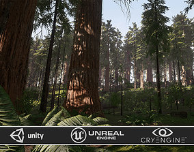3D model realtime Redwood Forest