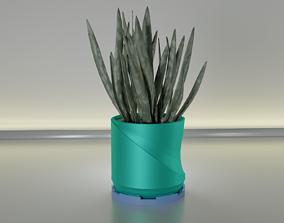 succulent plant pot 26 3D print model