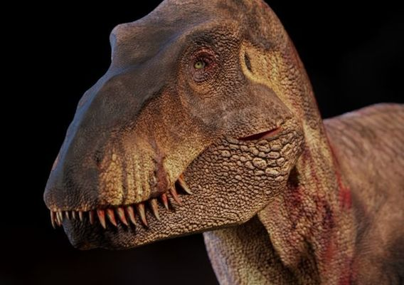 Ace the T.rex