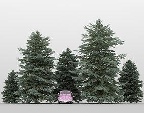 Fir Tree Pack 01 garden 3D