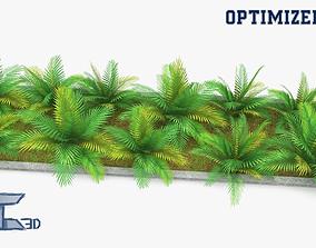 Plants Set 3D asset