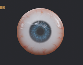 Realistic Human Eye eye 3D model realtime
