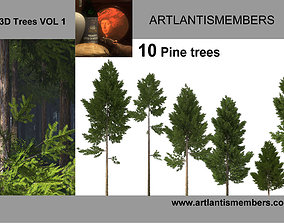 Pine tree collection 3D