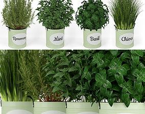 Plants collection 202 3D