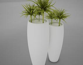 3D model plant living 2