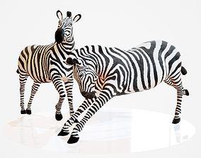 3D model Zebra Rigged
