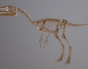 3D print model Compsognathus sculpture