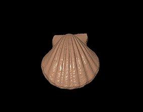 shell02 3D model