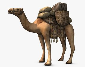 Loaded camel 3D asset
