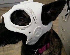 3D print model Dog Ranger Spy Helmet Stl mask File