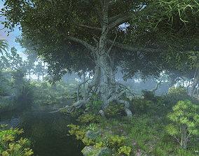 3D Tropical rain forest scene Beautiful