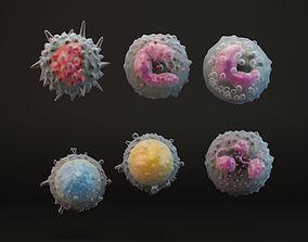 eosinophil White Blood Cells 3D