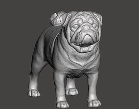 Pug Dog 3D printable model highdetaildog