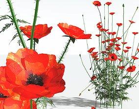EVERYPlant Field Poppy 02 --20 Models-- 3D