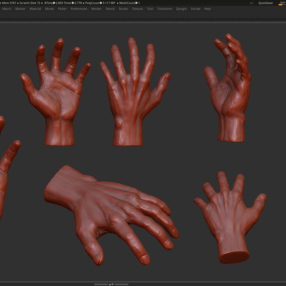 Realistic Hand 3d print model