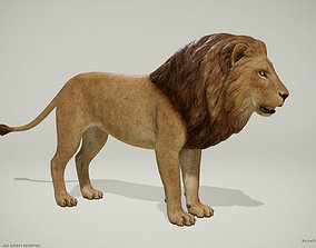 game-ready 3D Lion and Lioness - Game Ready PBR