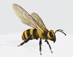 game-ready Bee 3D Model Low-Poly