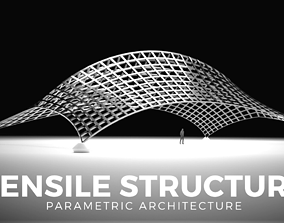 Architectural Tensile Structure Ridge with 3D model