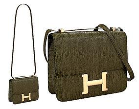 Hermes Constance Bag Green Snake 3D asset