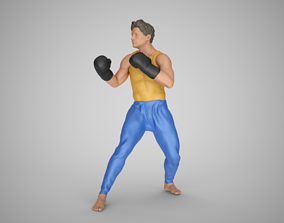 Boxing Training 3D print model