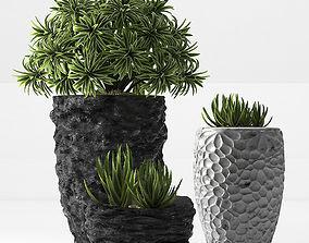 plant set 31 3D