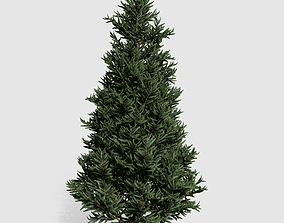 VR / AR ready Fraser Fir tree collection 9 trees Models 2