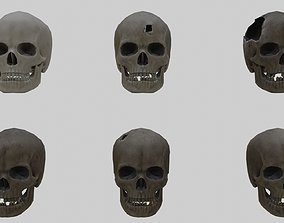 3D model Low Poly Skull Collection With PBR Materials 2