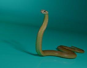 animated game-ready 3d model cobra snake
