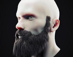 Beard Low Poly 10 3D asset