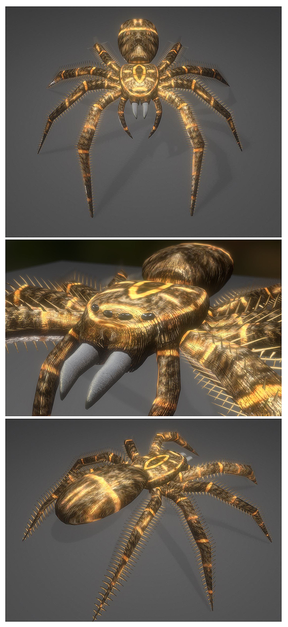 Rigged and Animated Low Poly Spider