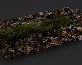 3D Moss in forest