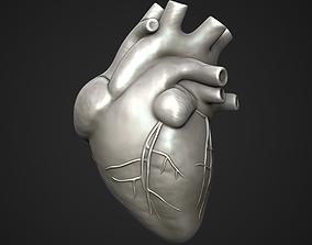 Human Heart Sculpt 3D model
