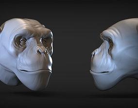 Monkey head 3D printable model