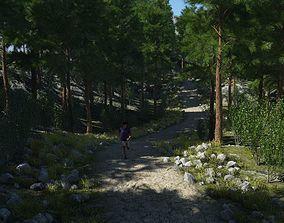 3D model Rough path in Terragen
